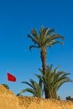Vlag in Mausoleum van Mohammed V Stock Afbeeldingen