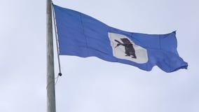 Vlag met het wapenschild van de stad van Yaroslavl Rusland stock video