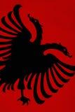 Vlag van Albanië stock foto