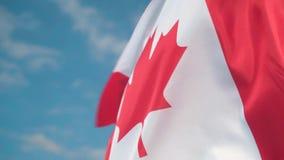 Vlag van Canada De vlag van Canada ontwikkelt zich in de wind tegen een hemel stock videobeelden
