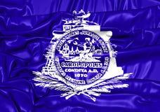 Vlag van Charleston City South Carolina, de V.S. Royalty-vrije Stock Foto's