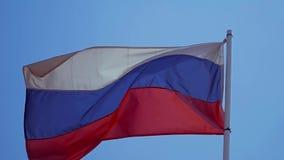 Vlag van de Russische federatie stock footage