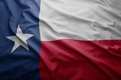 Vlag van de staat van Texas stock fotografie