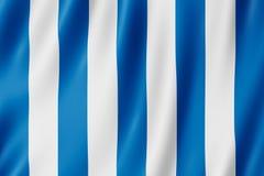 Vlag van de stad van Mar del Plata, Argentinië Stock Fotografie