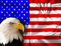 Vlag van de Verenigde Staten van Amerika met Eagle royalty-vrije stock foto's