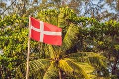 Vlag van Denemarken tegen de achtergrond van palmen stock afbeelding