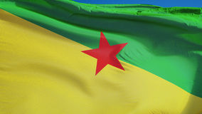 Vlag van Frans-Guyana in langzame motie voorzag foutloos met alpha- van een lus stock illustratie