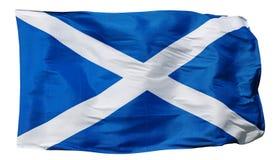Vlag van geïsoleerd Schotland - Stock Afbeelding