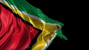 Vlag van Guyana