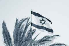 Vlag van Israël. Stock Fotografie