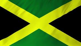 Vlag van Jamaïca die in windanimatie 2 golven in 1 stock video
