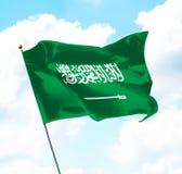 Vlag van Koninkrijk van Saudi-Arabië royalty-vrije illustratie
