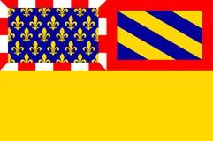 Vlag van Kooi -kooi-dOr in Bourgondië, Frankrijk stock illustratie