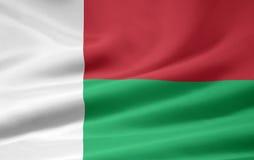 Vlag van Madagascar vector illustratie