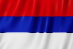 Vlag van Misiones-Provincie, Argentinië Stock Foto