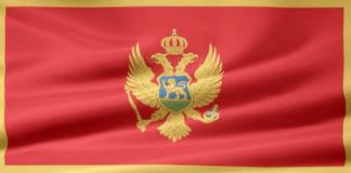 Vlag van Montenegro royalty-vrije illustratie
