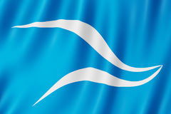 Vlag van Neuquen-stad, Argentinië Royalty-vrije Stock Afbeelding
