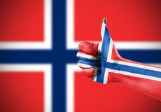 Vlag van Noorwegen Royalty-vrije Stock Afbeelding