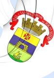 Vlag van Porto Alegre City, Brazilië Royalty-vrije Stock Afbeeldingen