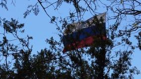 Vlag van Rusland stock videobeelden