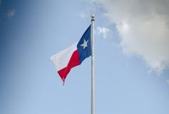 Vlag van Texas stock afbeeldingen