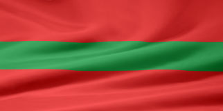 Vlag van Transnistirab vector illustratie