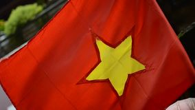 Vlag van Vietnam stock footage