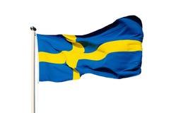 Vlag van Zweden Royalty-vrije Stock Foto's