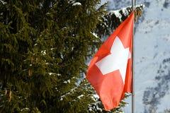 Vlag van Zwitserland Stock Foto's