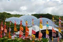 Vlaggen bij het Eden project Stock Foto's