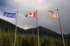 Vlaggen - de provincies van Canada royalty-vrije stock foto's