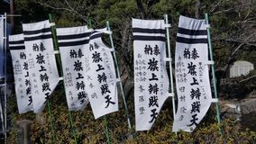Vlaggen in de Tempels stock footage