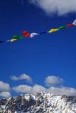Vlaggen in de wind royalty-vrije stock foto's