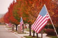 Vlaggen op een Nationale feestdag Stock Foto