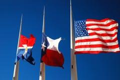 Vlaggen van Dallas stock afbeelding