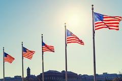 Vlaggen van de Verenigde Staten Stock Foto's