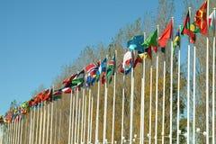 Vlaggen van landen Stock Fotografie
