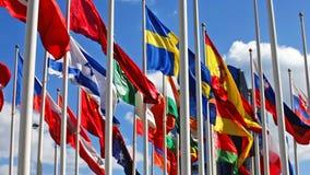 Vlaggen van staten op vlaggestokken stock footage