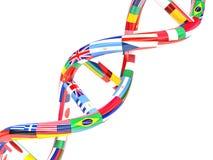 Vlaggen van verschillende landen in de vorm van DNA royalty-vrije illustratie
