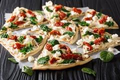 Vlak brood met hummus, in de zon gedroogde tomaten, spinazie en geitkaasclose-up horizontaal royalty-vrije stock foto