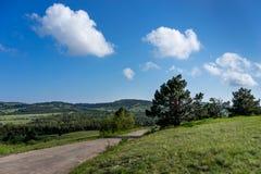 Vlak landschap met groene vegetatie en weg onder blauwe hemel Royalty-vrije Stock Afbeelding