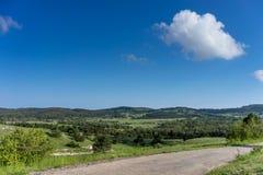 Vlak landschap met groene vegetatie en weg onder blauwe hemel Stock Foto