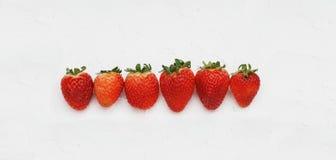 Vlak leg Aardbeien op Witte Achtergrond Hoogste mening Ruw van Zoete Aardbei Stock Afbeeldingen
