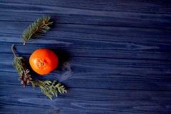 Vlak leg achtergrond met takken van spar en mandarijn Oranje mandarine en groene takken van spar op het donkerblauwe hout Stock Fotografie