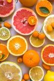 Vlak leg hoogste mening van mooie verscheidenheid van de verse besnoeiing van de citrusvruchtenhelft royalty-vrije stock foto's