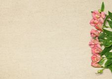 Vlak leg kader met bloemen op beige granietachtergrond royalty-vrije stock foto