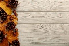 Vlak leg kader van de herfstbladeren, kegels en noten op een houten rug stock foto