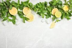 Vlak leg samenstelling met munt, citrusvruchten en ijsblokjes Royalty-vrije Stock Afbeelding