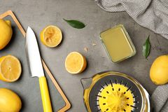 Vlak leg samenstelling met vers gedrukt citroensap royalty-vrije stock afbeeldingen