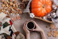 Vlak leg stijl van de herfstkoffie, pompoenen en pijpjes kaneel royalty-vrije stock foto's